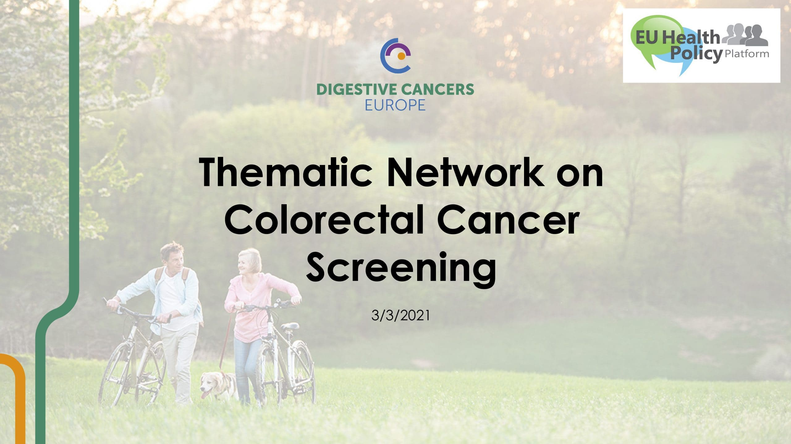Thematic Network on Colorectal Cancer Screening